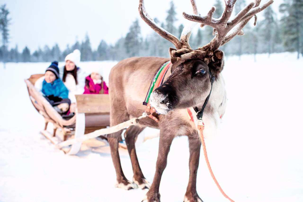 Top Christmas Holiday Destinations for Families